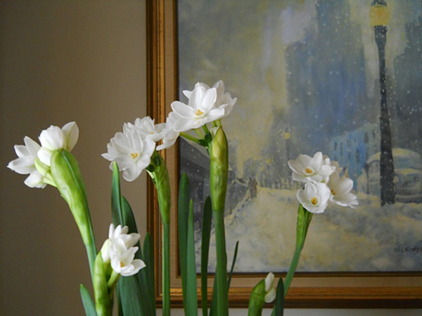 paper whites and art