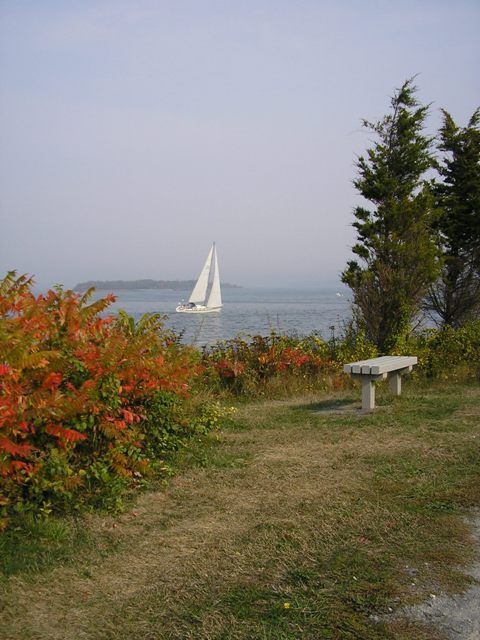a sailboat passing by Webb Park